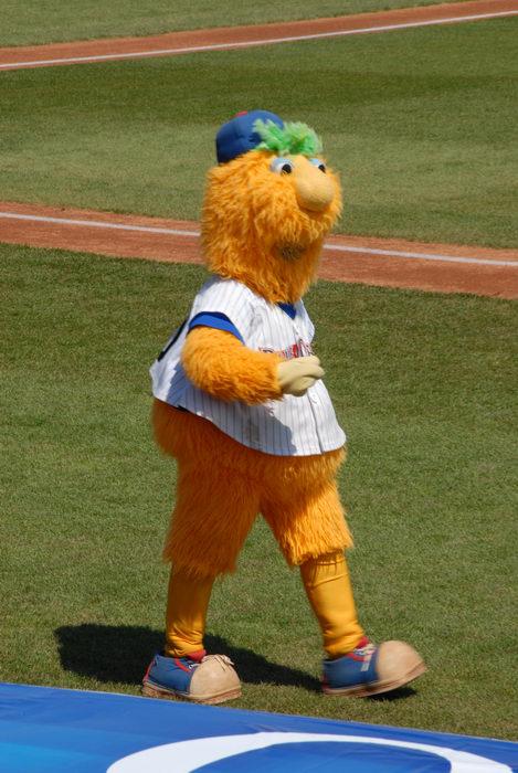 Buster, blueclaws, grass, mascot