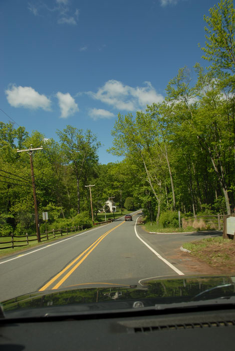 blue sky, dash, road, trees