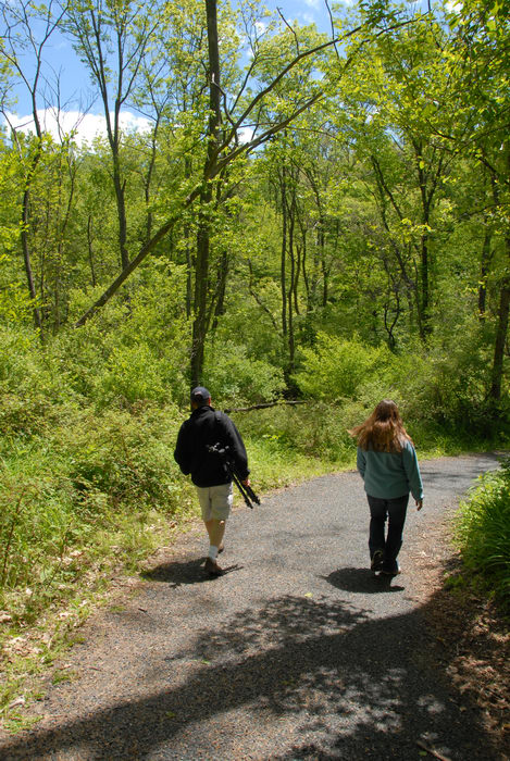 Jackie, Rob, ground cover, path, paved, trail, trees, woods