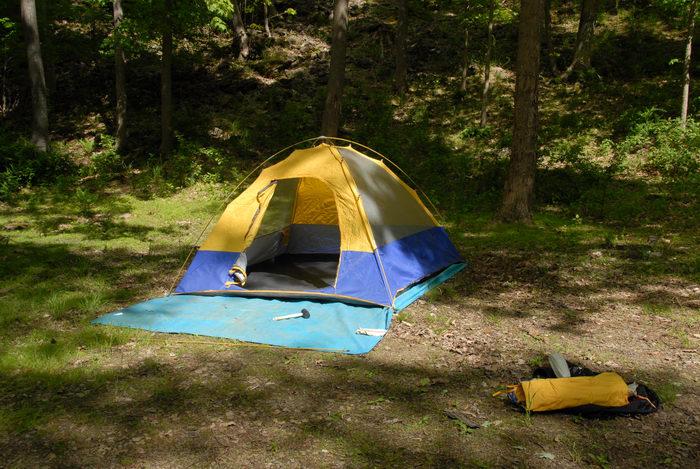 grass, rocks, rubber mallet, tarp, tent, woods