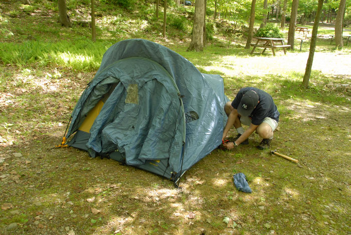 Rob, grass, tent, woods