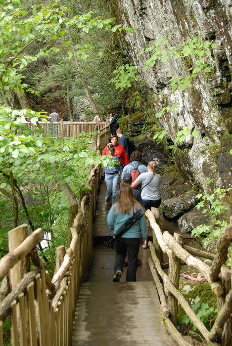 Jackie, cliff, railing, rock, wooden walkway