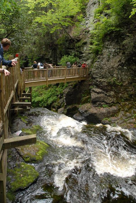 bridge, cliff, forest, people, river, rock, waterfall, wooden walkway, woods