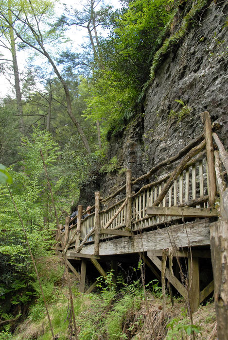cliff, railing, rock, trees, wooden walkway
