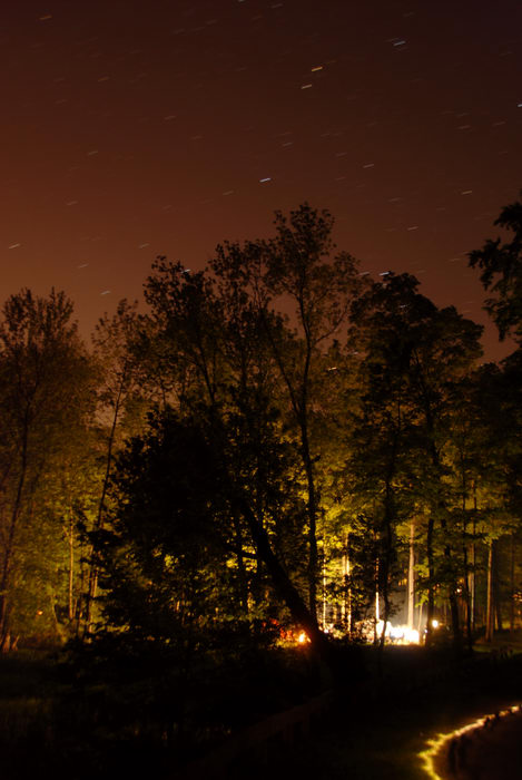 My Favorite Pictures, lights, night shot, space, stars, trees