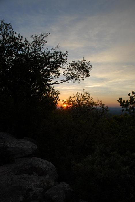 rocks, sunrise, trees