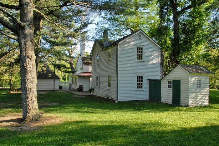 farmhouse, grass, rear, tree
