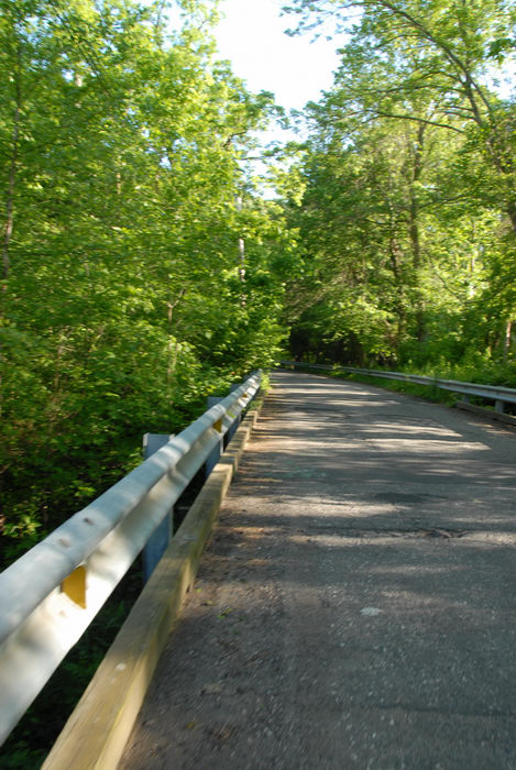 gaurdrail, road, tree