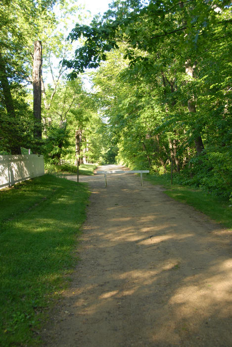 dirt path, fence, grass, trees