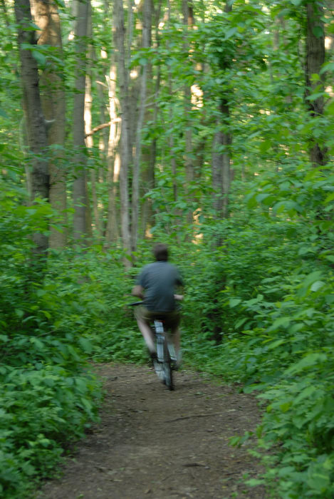 mountain bike, path, person, trail, tree, woods