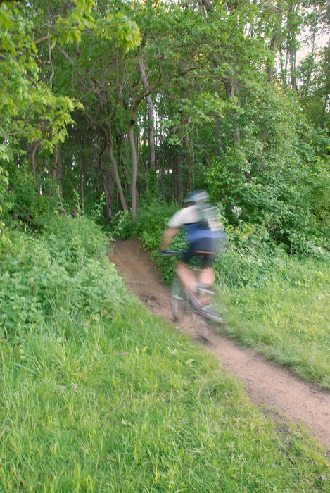 grass, ground cover, mountain biker, path, trail, woods
