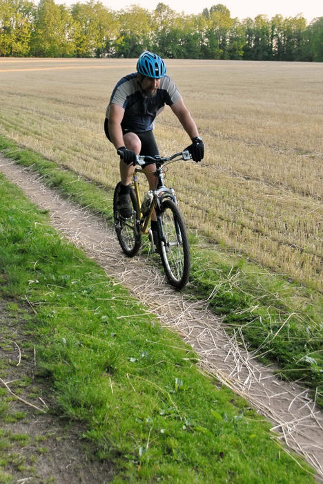 field, grass, mountain biker, path, trail