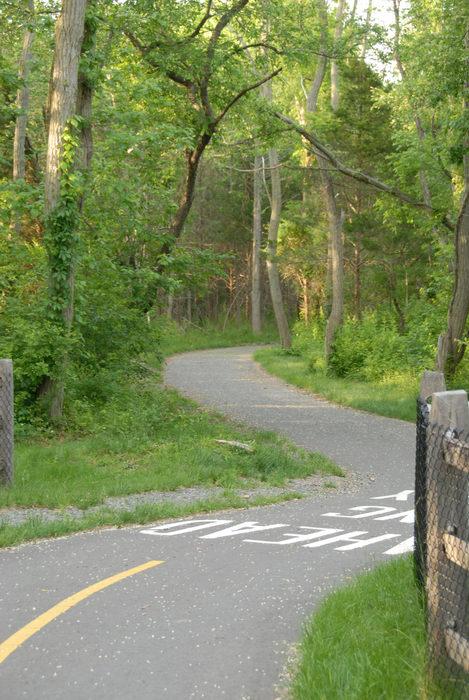 bike path, fence, grass, trees