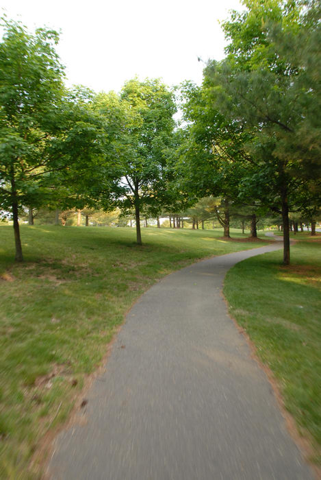 bike path, grass, trees