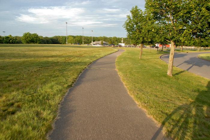 bike path, field, grass, trees