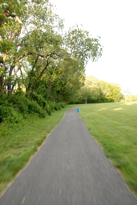 bike path, grass, trees