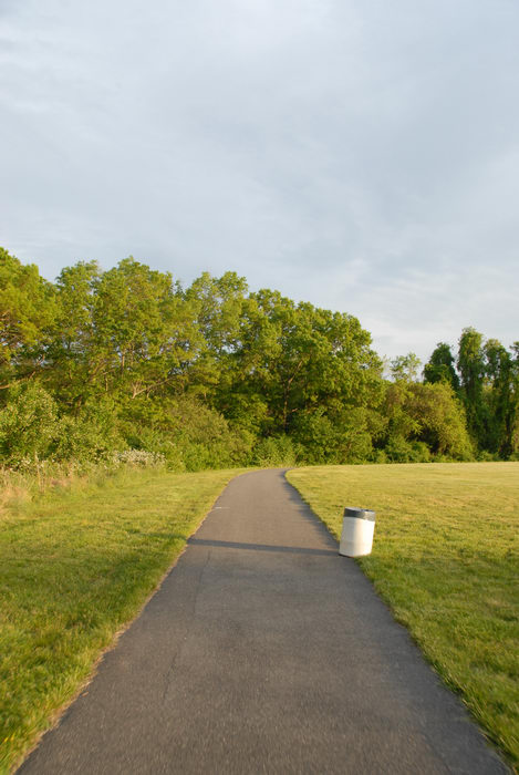 bike path, field, garbage can, grass, trees