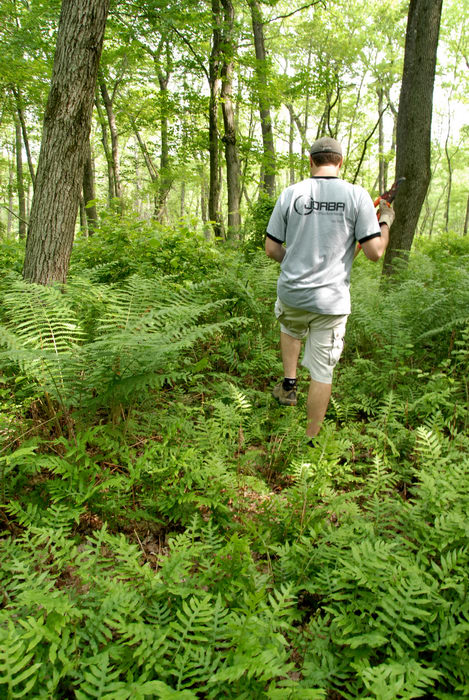 JORBA Tee Shirt, S.M.A.R.T., SMART, ferns, ground cover, trail maintenance, trees, woods