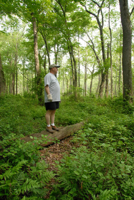 S.M.A.R.T., SMART, ground cover, log, path, trail, trail maintenance, trees, woods