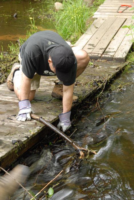 S.M.A.R.T., SMART, beaver dam, bridge, garbage bridge, stream, trail maintenance, water, wooden bridge