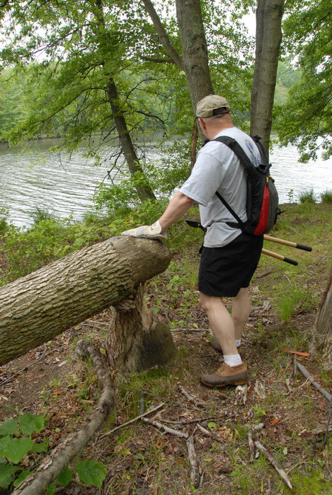 S.M.A.R.T., SMART, lake, stream, tools, trail maintenance, trees, water, woods