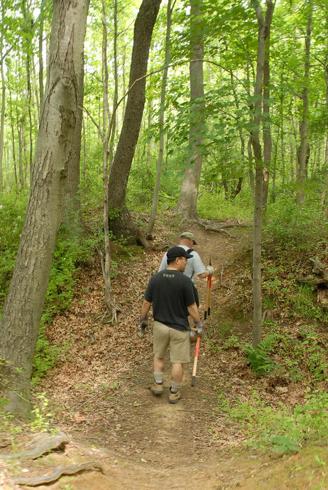 S.M.A.R.T., SMART, grass, ground cover, path, trail, trail maintenance, trees, woods