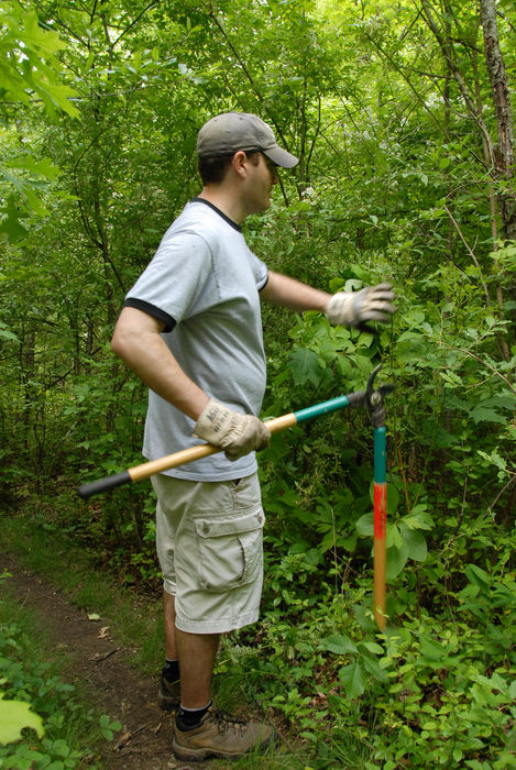 S.M.A.R.T., SMART, ground cover, tools, trail maintenance, trees, woods