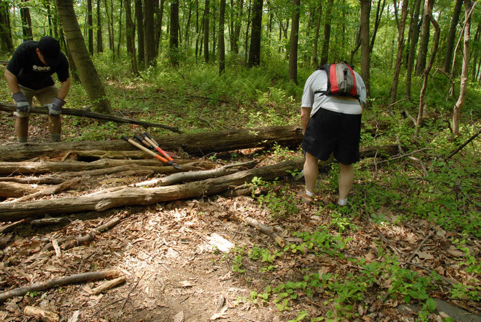 S.M.A.R.T., SMART, ground cover, log pile, path, tools, trail, trail maintenance, trees, woods