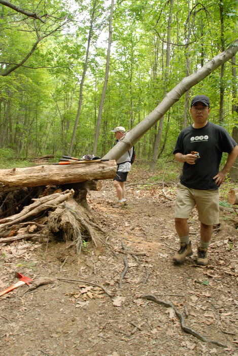 IMBA Tee Shirt, S.M.A.R.T., SMART, log pile, path, roots, tools, trail, trail maintenance, trees, woods