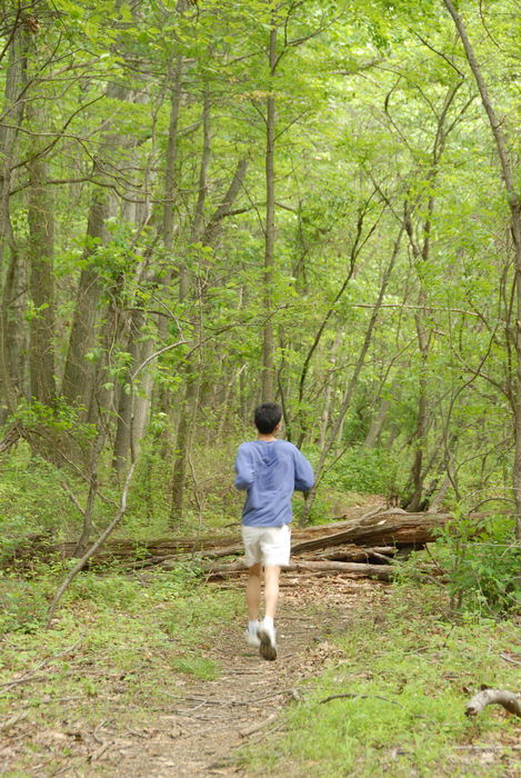 grass, ground cover, jogger, log pile, movement, path, roots, trail, trees, woods