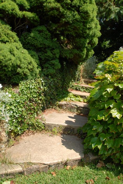 flowers, leaves, path, stairs, steps, trees, walkway