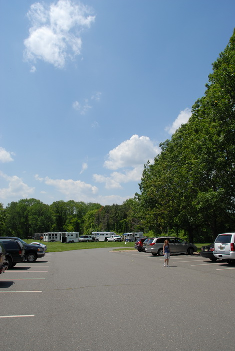 blue sky, leaves, trees, parking lot