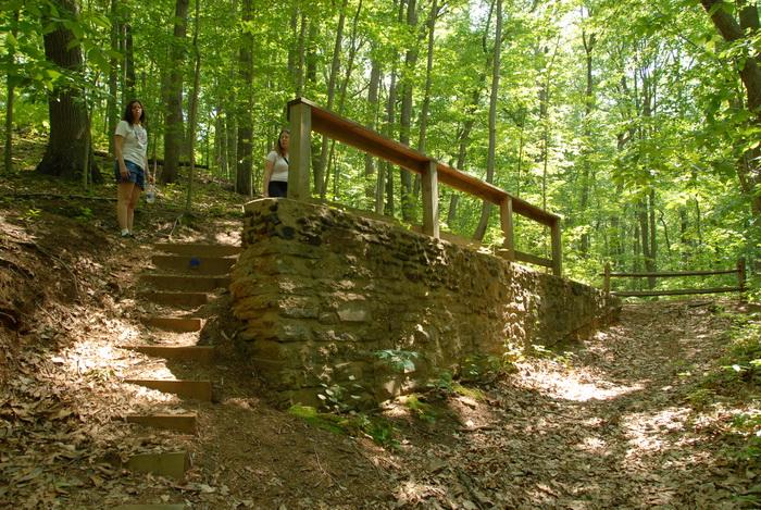 Jackie, Jaimi, leaves, rocks, stairs, steps, trees, fence