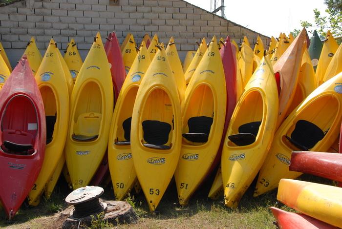 grass, kayaks