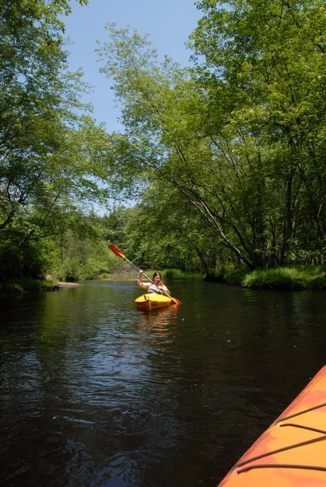 blue sky, kayak, kayaking, paddling, river, water, trees