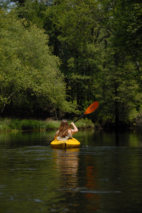 kayak, kayaking, paddling, river, trees, water, grass