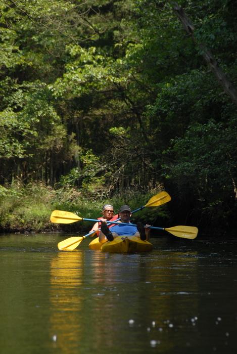 grass, kayak, kayaking, paddling, river, trees, water, Vaughn