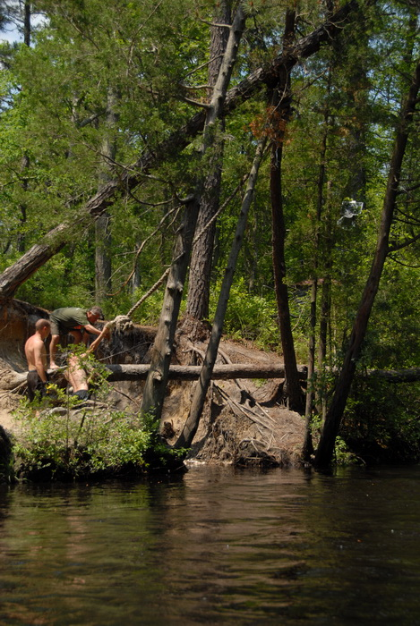 river, rope swing, trees, water
