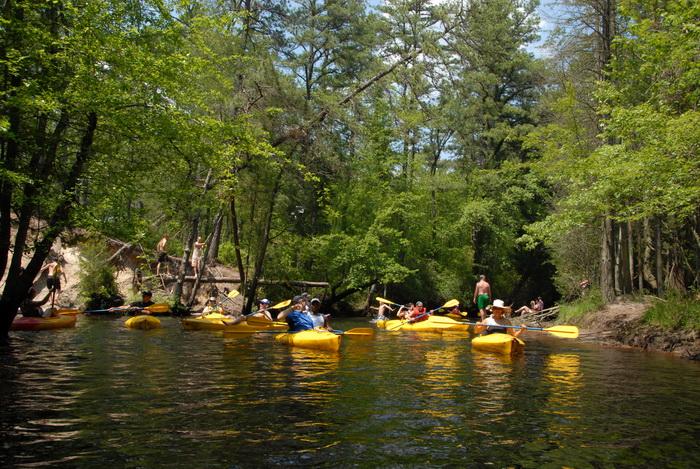 kayak, kayaking, paddling, river, trees, water, grass