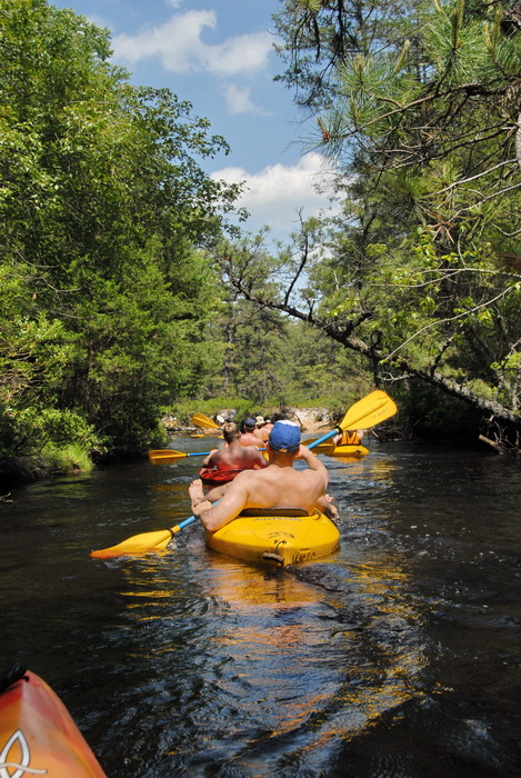 blue sky, kayak, kayaking, paddling, river, water, trees