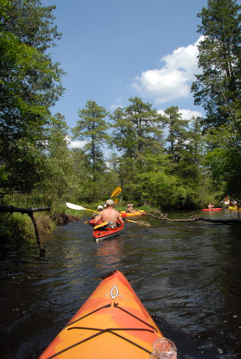 blue sky, kayak, kayaking, paddling, river, trees, water, grass
