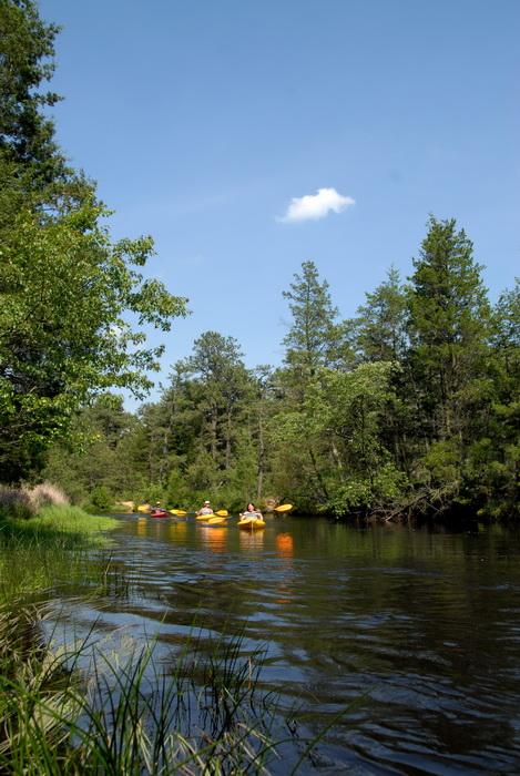 blue sky, kayak, kayaking, paddling, river, trees, water, grass