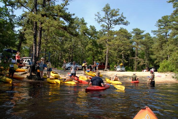beach, blue sky, kayak, kayaking, paddling, river, water, trees