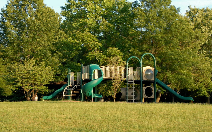 grass, trees, woods, playground