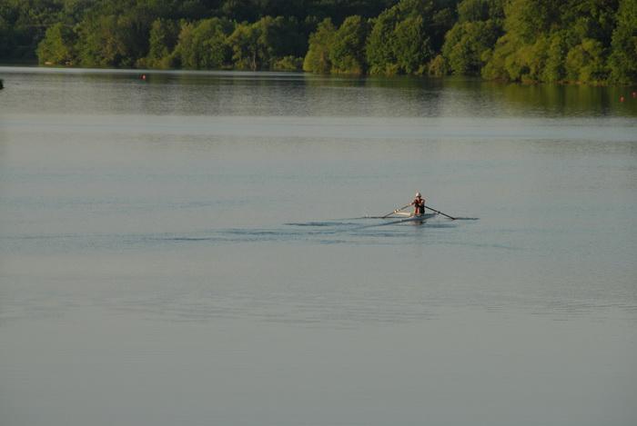 lake, pond, trees, water, paddling, crew