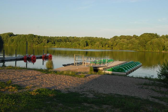 lake, pond, trees, water, dock, paddle