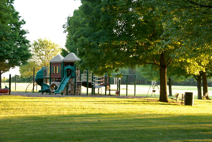 grass, lake, pond, trees, water, playground, play area