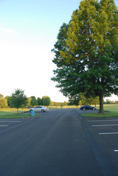 grass, parking, trees