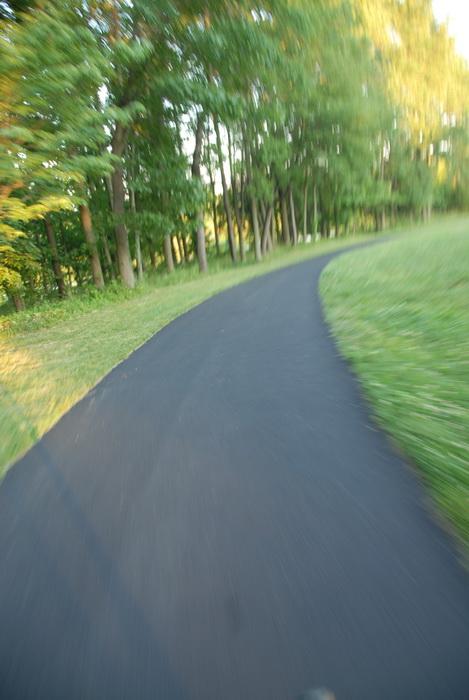 grass, paved path, trees, speeding, blurred