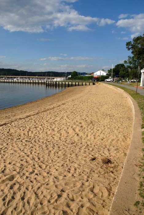 blue sky, beach, grass, sand, water
